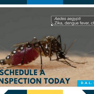 sangura D.A.L. Pest Control